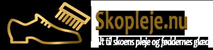 Skopleje.nu Logo